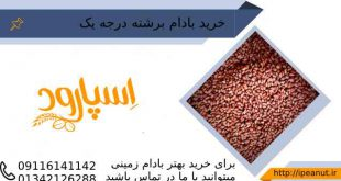 فروش عمده بادام زمینی