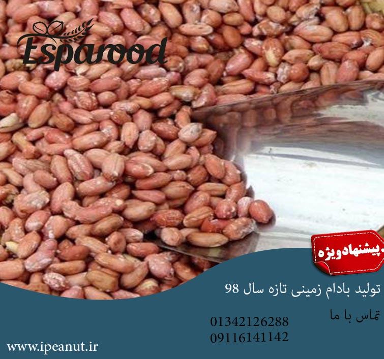 فروش عمده بادام زمینی دشت مغان